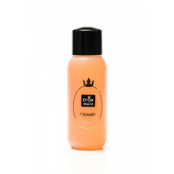 Cleaner Orange 300ml - 008D
